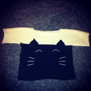 pull petit chat